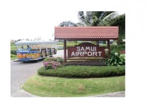 ธุรกิจสนามบินและสายการบิน