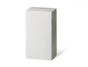 กล่องบรรจุภัณฑ์ปลอดเชื้อ สำหรับเครื่องดื่มและอาหารเหลว (คอมบิบล็อคสมอลล์ 250 มิลลิลิตร)